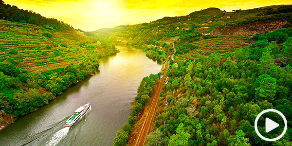 Witness the wonders of the Golden Douro
